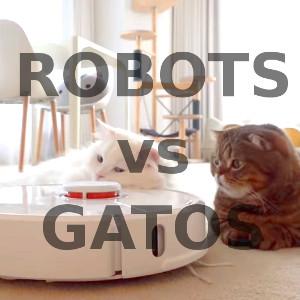 Robots Aspiradores vs Gatos en Casa ¿Es buena idea?